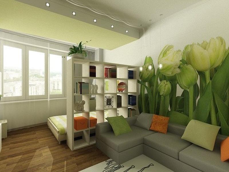 Как можно сделать из комнаты и спальню и гостиную фото